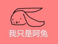 给兔子取什么名字好