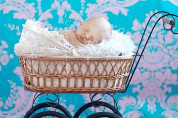 2020年鼠宝宝起名|2020苏姓宝宝起名大全