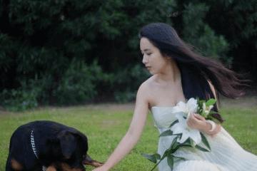 宠物狗狗名字大全2019