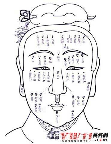 [痣相图解] 女性面部痣相图解