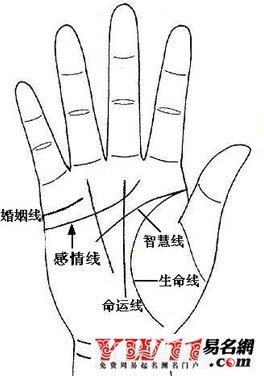 手纹算命图解
