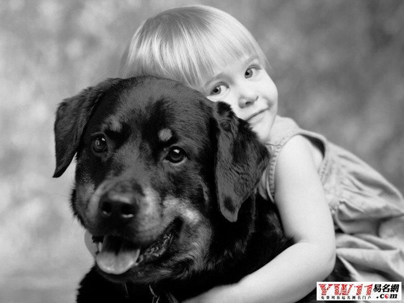 梦见,代表着人与人之间的关系,也表示自己被烦恼事纠缠或讨厌的人打扰或者有小人背后捅子,要控制自己的情绪,避免与人发生口角。还有重要的一点,就是梦者近期常常看到流浪狗,心里厌恶、很害怕被它们咬,这种心理因素导致梦见被狗咬。 梦见张嘴就咬人的狗,多代表生活中一些不友好的人,人与人相处,自然要以和睦为主,但是并不是所有人都会友好、和睦,所以在与他们打交道时候,要有充分的准备,要注意交往交流的方式方法,免得招惹是非、惹了麻烦、自讨无趣; 梦见狗咬人,但不是用力咬,表示近期会碰到不顺、困难,但对自己并没有多大的伤
