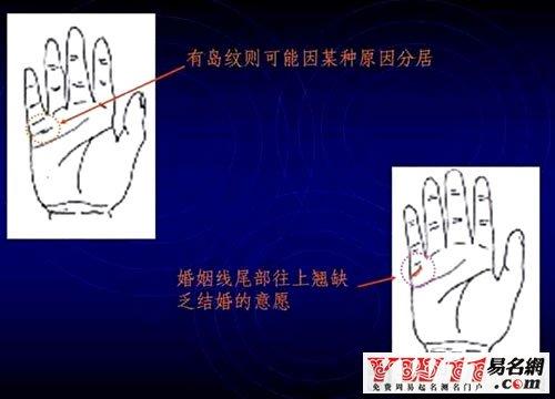 男女通用的简易手相算命图解手相5)事业线