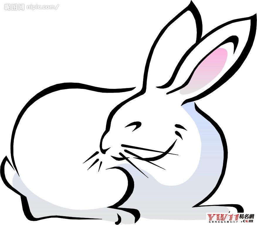 十二生肖 兔年起名