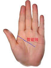 左手智能线