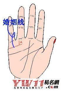 教你看手相,超准的手相图解