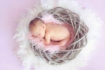 2015羊年宝宝几月出生好