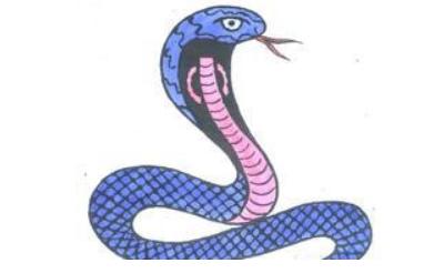 梦到被蛇咬_女人梦见被蛇咬