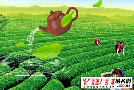 茶葉店起名案例及分析