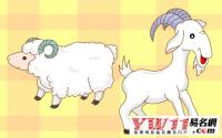 属羊的和什么属相相克、相冲