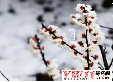【立冬是几月几日】立冬是几月几日