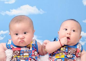 双胞胎男孩名字,鸡年双胞胎男孩名字