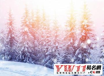 描写雪景的句子,描写雪景的优美句子