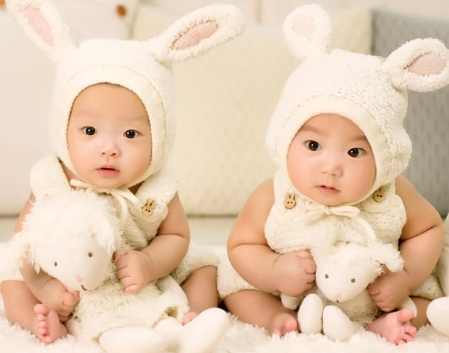 双胞胎生辰八字起名2017