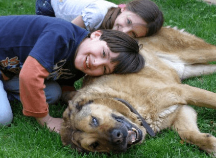 狗年出生的男宝宝取名|狗年九月出生宝宝取名
