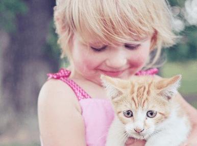 宠爱的猫咪募款者的名字大全