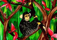 属猴的和什么属相合财