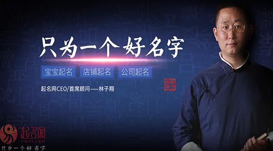 林大师宣传片