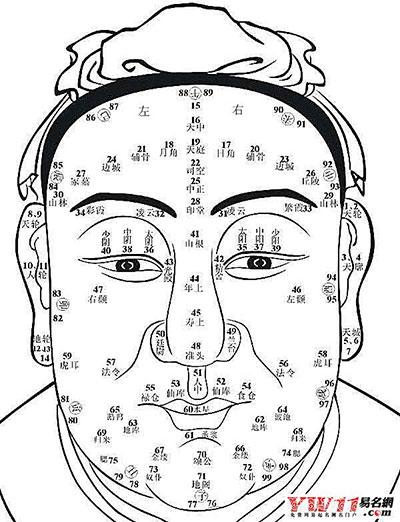 手绘鼻子的画法图解